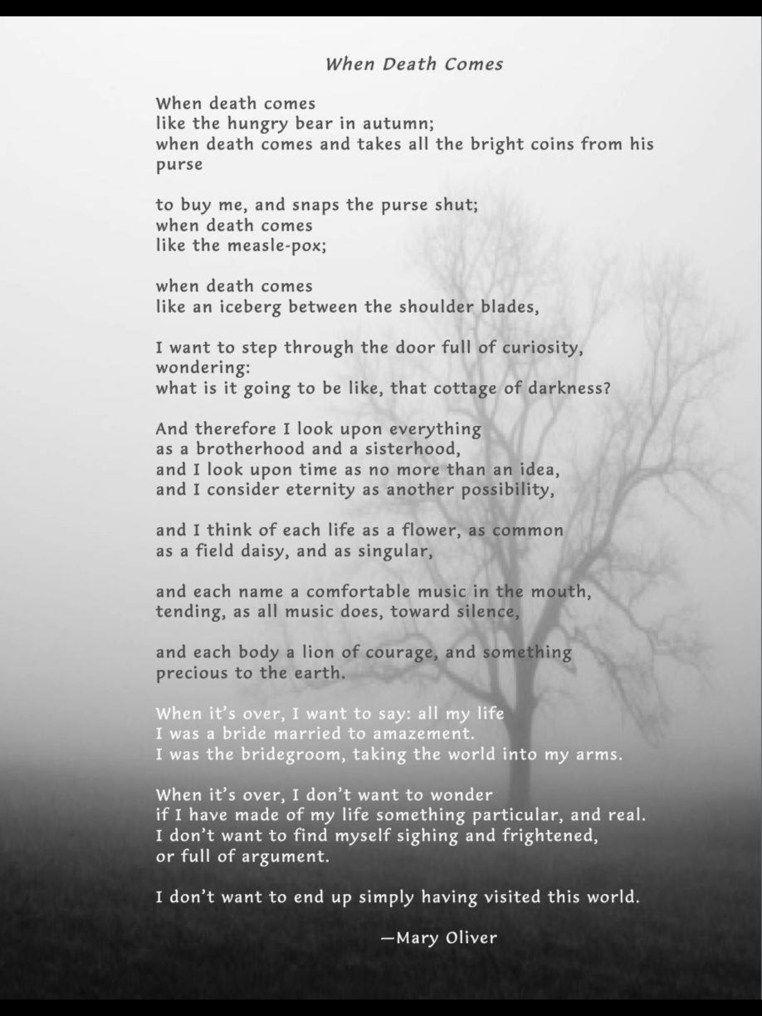 when death comes mary oliver essay A 4 pages analytical essay that explicates the poem when death comes by mary oliver no additional sources are cited.